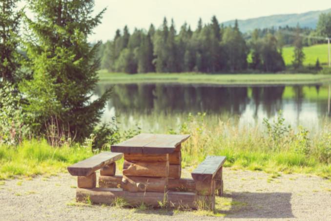 lake and picnic table: MaxAutoPro Auto Advice Blog