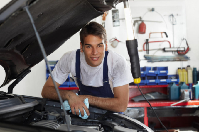 choosing a dealership or local mechanic